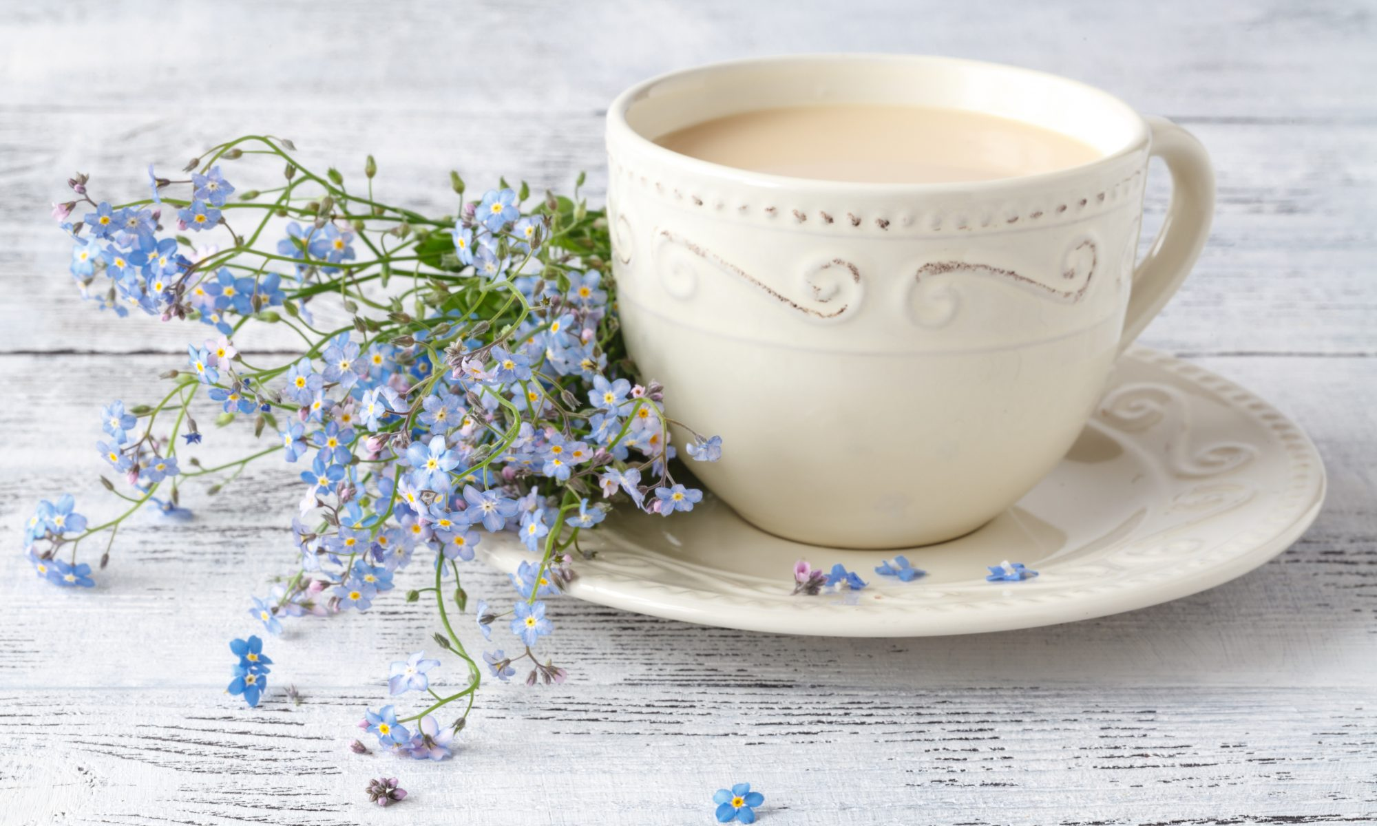 Life is a Cup of Tea